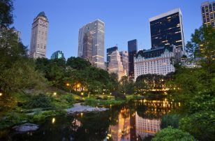 Central Park at Dusk| Loews Regency New York Hotel