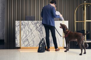 Loews Loves Pets | Loews Hotels